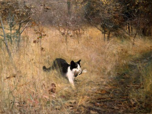 Кошка на охоте за птицами