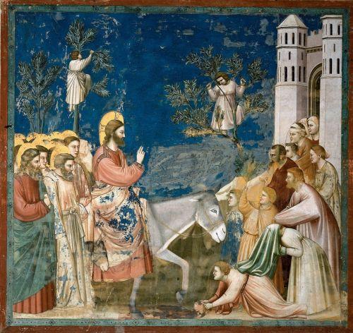 Арена Часовня в Падуе Вход Господень в Иерусалим