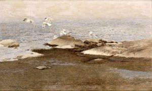 Лильефорс Бруно Чайки на берегу