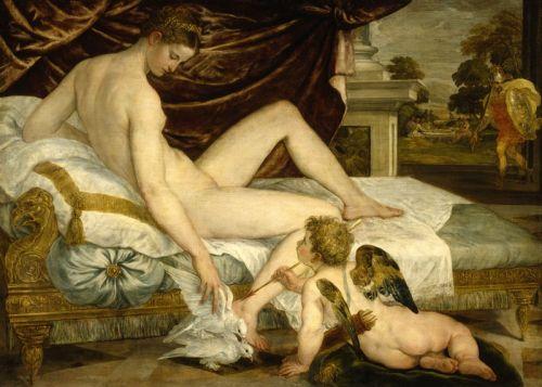 Sustris Venus