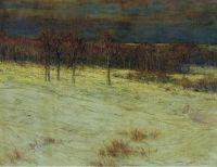 Заснеженные поля
