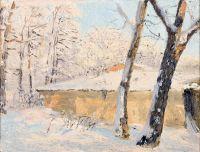 Дерева в снігу