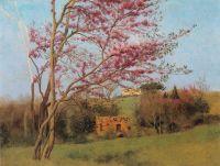 Пейзаж. Цветущий красный миндаль