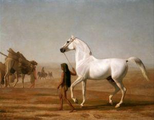 Агас Жак-Лоран The Wellesley Grey Arabian Led through the Desert