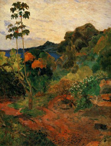 Тропическая растительность