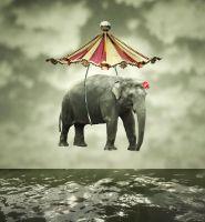 Літаючий слон