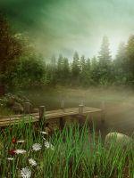 Туман в лесу над озером