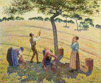 Збирачі яблук