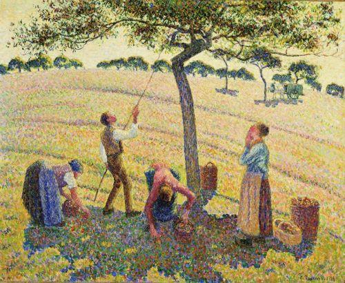 Собиратели яблок