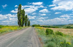 Фотокартини Дорогою в українське село