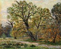 Лес в Фонтенбло осенью
