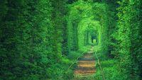 Тоннель влюбленных
