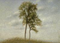 Молодой дуб