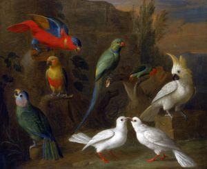 Барокко Пейзаж с экзотическими птицами