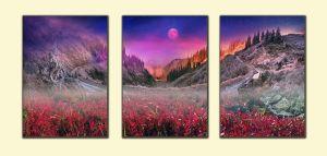 Модульные картины Карпатский перевал