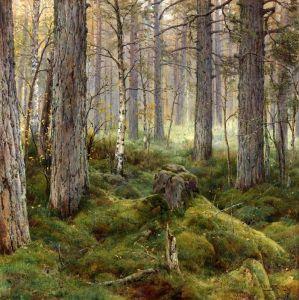 Вельц Иван Березовый лес