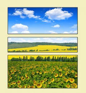 Модульные картины Весенний пейзаж с подсолнухами №1