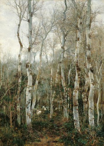 Зима в Андалусии
