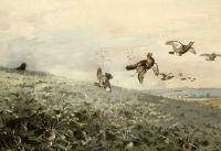 Охота на рябчиков
