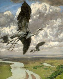 Тома Ганс Дивные птицы