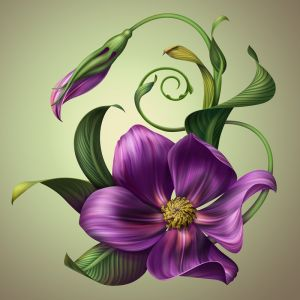 Фотокартины для интерьера Цветок 2
