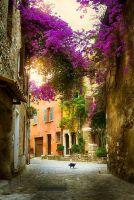 Красивый старый город