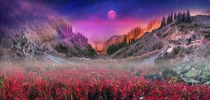 Фотокартини Карпатський перевал