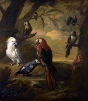 Экзотические птицы в лесном пейзаже