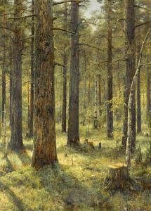 Вельц Иван Сосновый лес