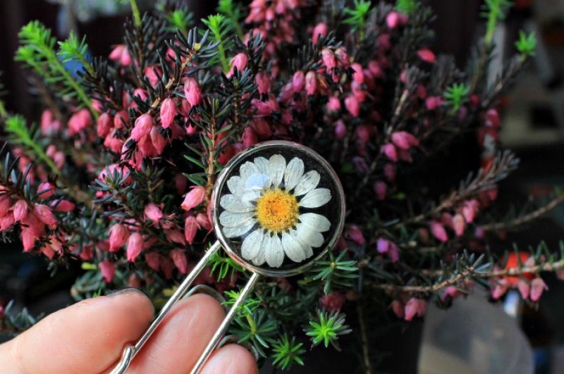 Булавка на лацкан или для кардигана с ромашкой Белый ювелирная смола, настоящи Новицкая Ольга - фото 1