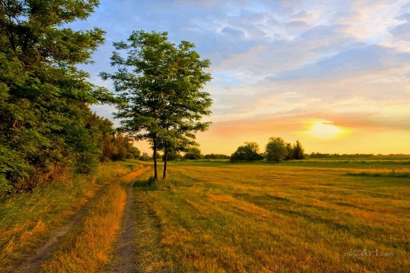 Дорогой на запад  печать на холсте, натянут UkrainArt - фото 1