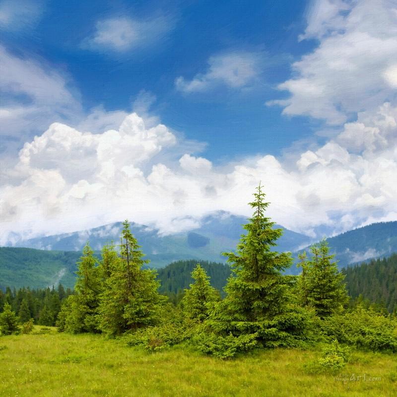Карпатский пейзаж  печать на холсте, натянут UkrainArt - фото 1
