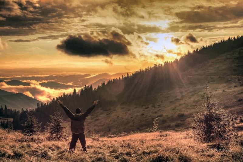 Радость достижения  печать на холсте, натянут UkrainArt - фото 1