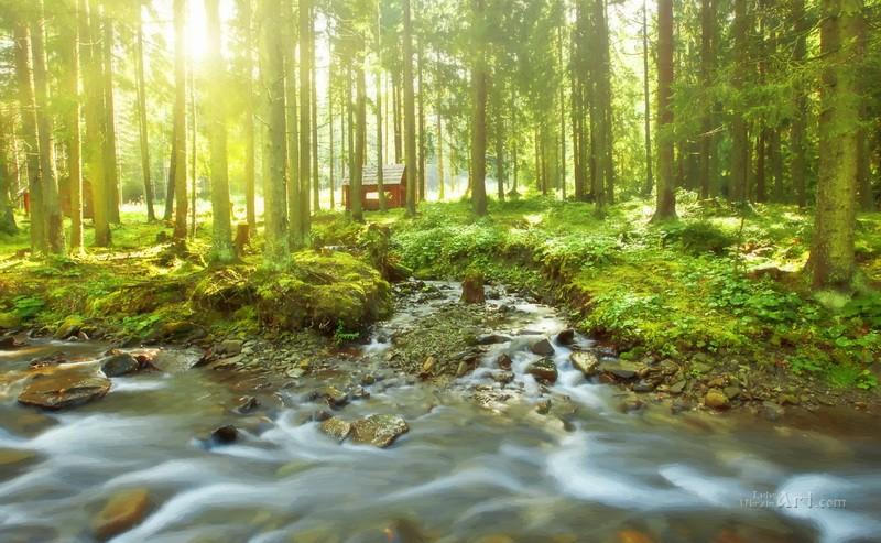 Река в лесу  печать на холсте, натянут UkrainArt - фото 1