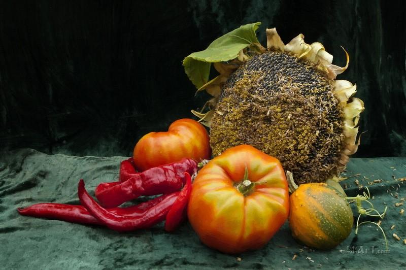 Овощи  печать на холсте, натянут UkrainArt - фото 1