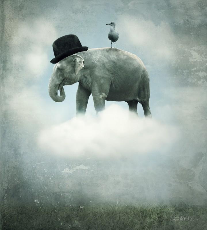 Слон  печать на холсте, натянут UkrainArt - фото 1