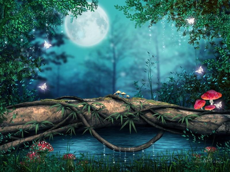 В лунную ночь  печать на холсте, натянут UkrainArt - фото 1