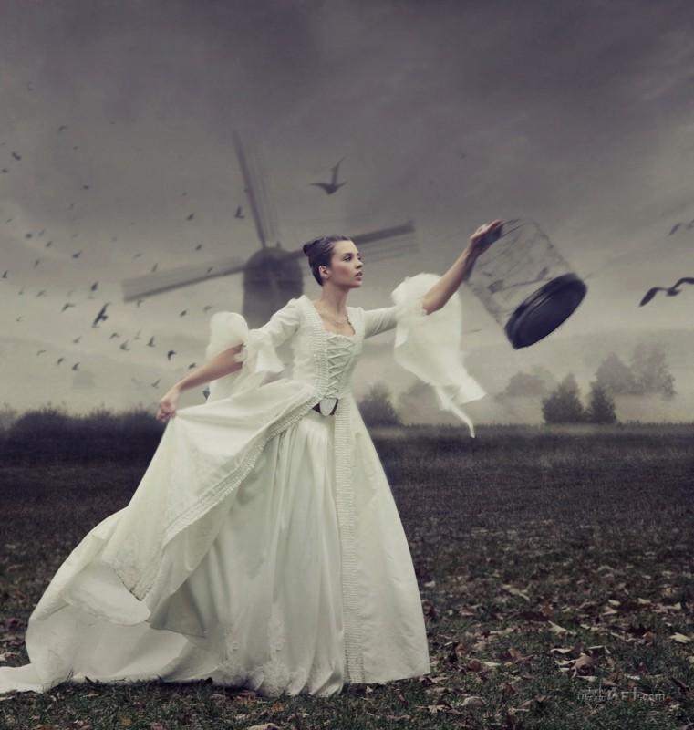 На свободу  печать на холсте, натянут UkrainArt - фото 1