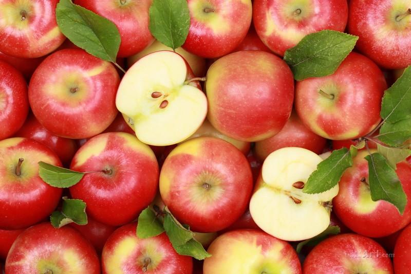 Яблоки  печать на холсте, натянут UkrainArt - фото 1