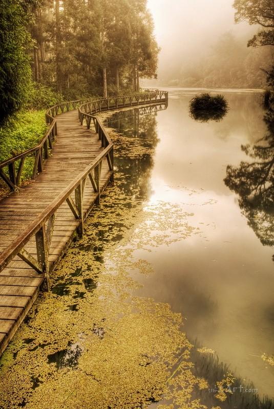 Вдоль озера  печать на холсте, натянут UkrainArt - фото 1