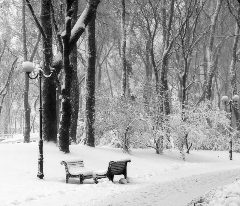 В зимнем парке  печать на холсте, натянут UkrainArt - фото 1