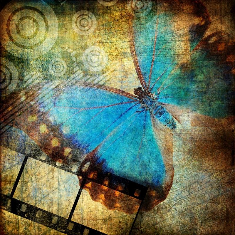 Голубий метелик  друк на полотні, натягнут UkrainArt - фото 1