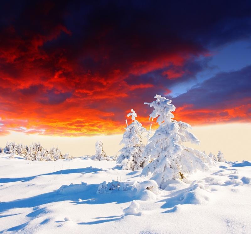 Зимний пейзаж  печать на холсте, натянут UkrainArt - фото 1