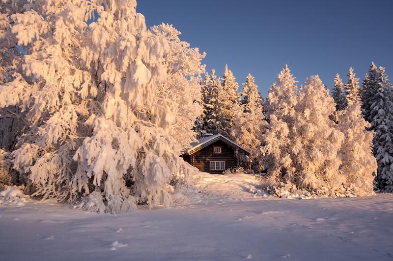 Розовая зима  печать на холсте, натянут UkrainArt - фото 1