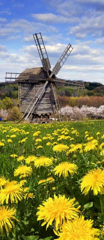 Старая мельница №1  печать на холсте, натянут UkrainArt - фото 3