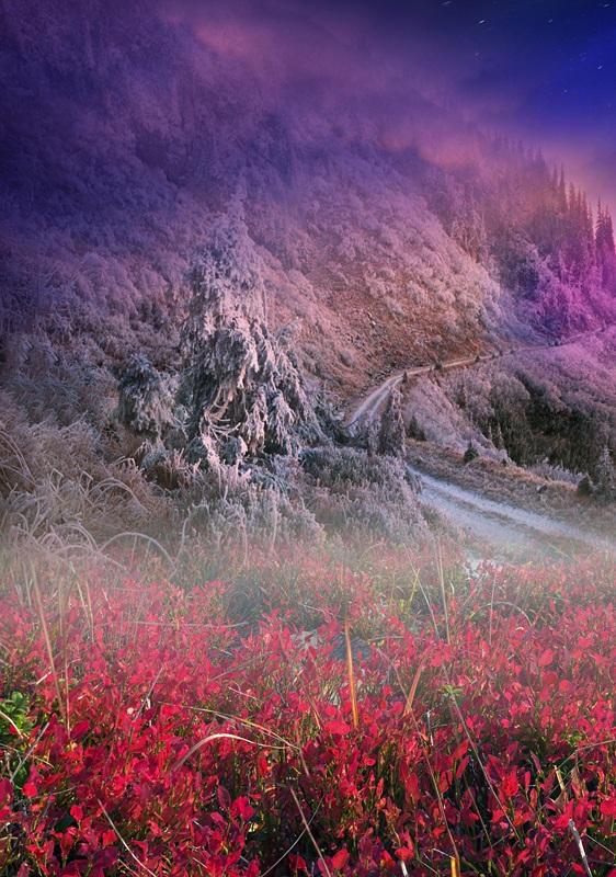 Карпатский перевал  печать на холсте, натянут UkrainArt - фото 2