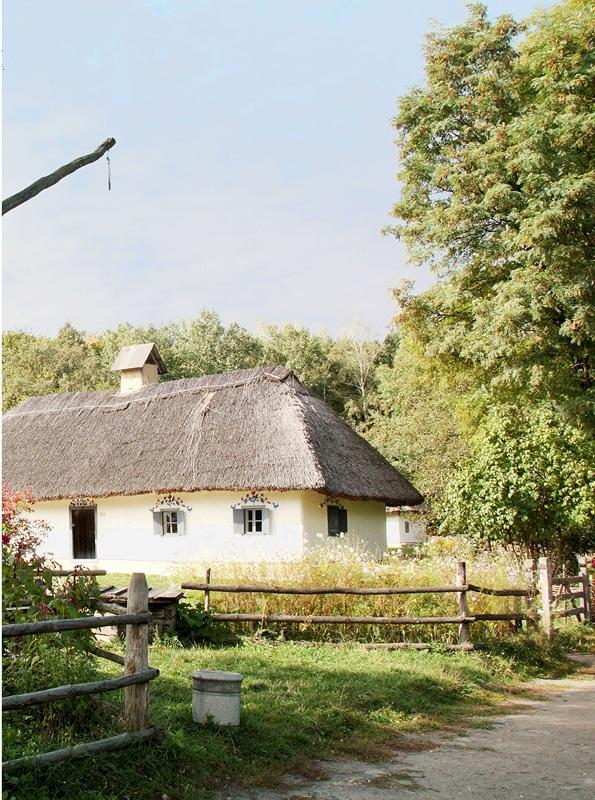 Украинская деревня №1  печать на холсте, натянут UkrainArt - фото 3