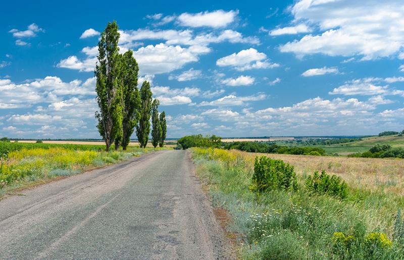 По дороге в украинскую деревню  печать на холсте, натянут UkrainArt - фото 1