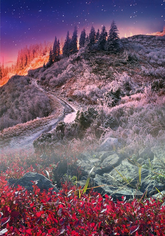 Карпатский перевал  печать на холсте, натянут UkrainArt - фото 4