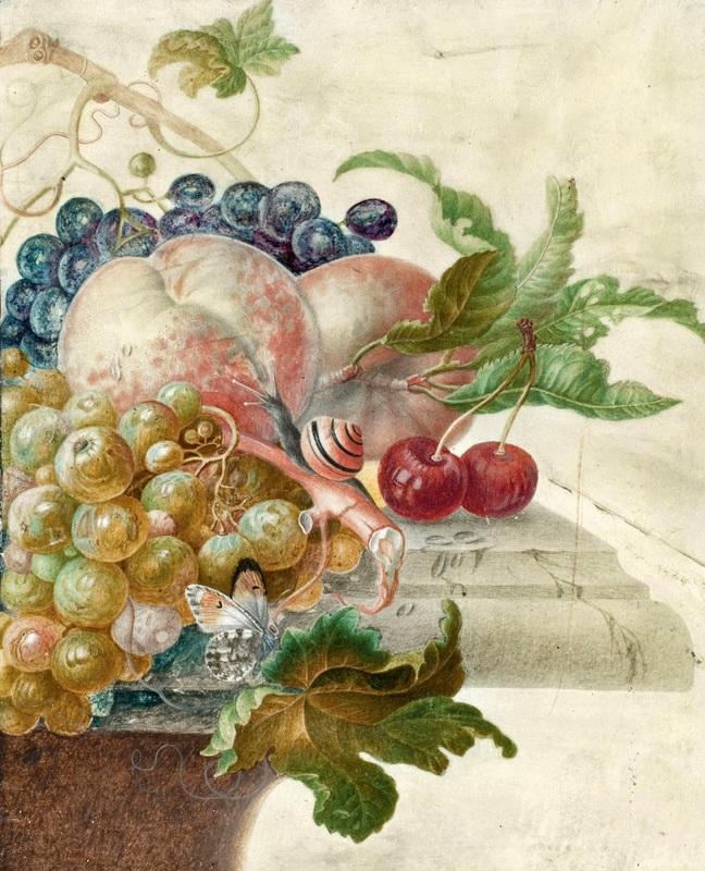 Натюрморт с фруктами, улиткой и бабочкой на каменном выступе  печать на холсте, натянут Хенстенбург Герман - фото 1